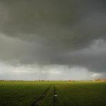051103 Weiland met regenbuien