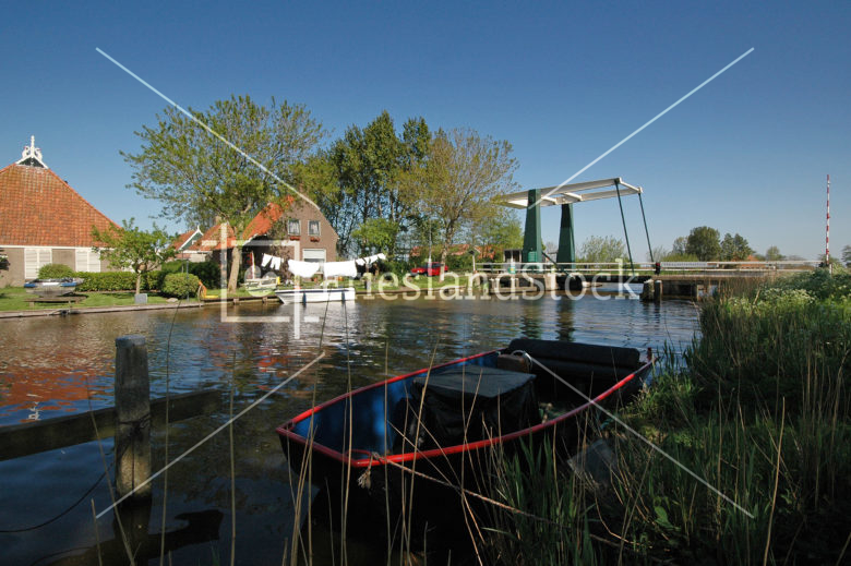 Abbegaasterketting - FrieslandStock