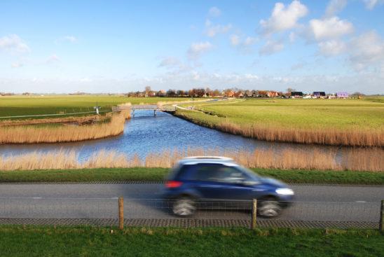 Ferwoude - FrieslandStock
