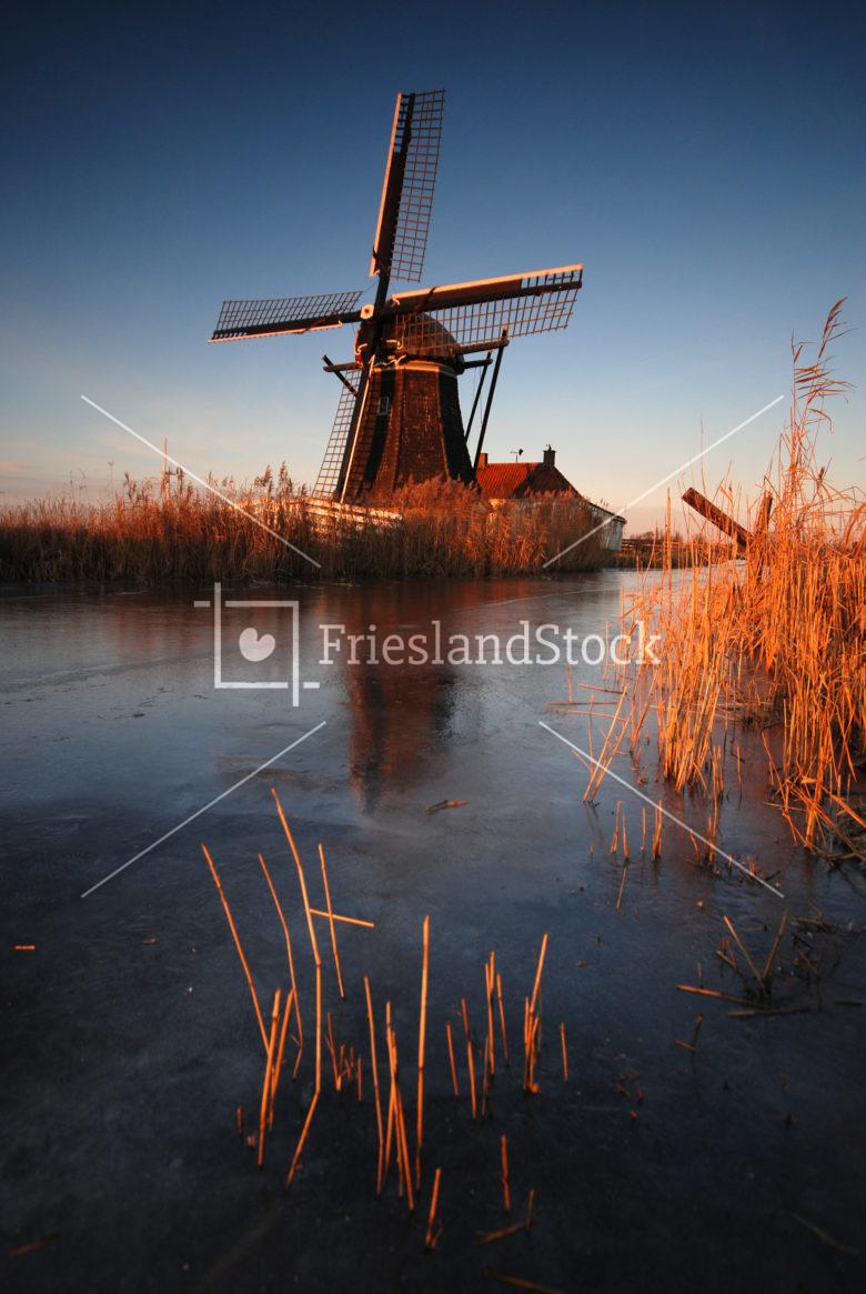 Babuurstermolen nabij Tjerkwerd - FrieslandStock