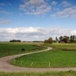 Boerderij nabij Schoterzijl - FrieslandStock