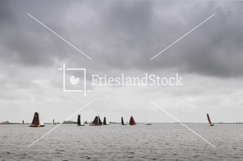 Preamkesilen op de Oudegaasterbrekken - FrieslandStock