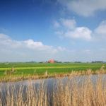 Landschap bij Workum - FrieslandStock