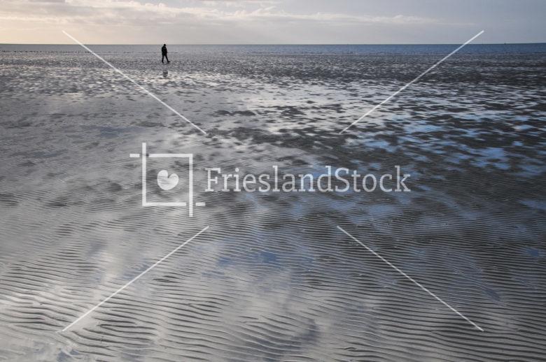 Eb bij Harlingen - FrieslandStock