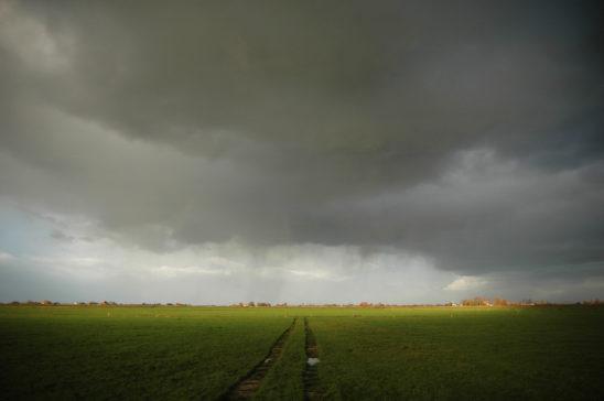 Weiland met regenbuien - FrieslandStock