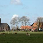 Westhem in voorjaar - FrieslandStock