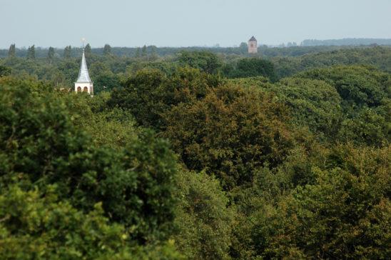 Gaasterland vanaf Oudemirdum - FrieslandStock