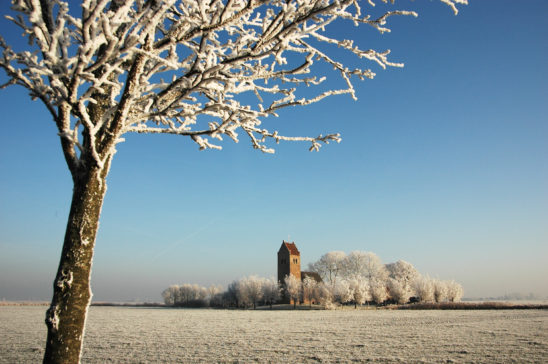 Westhem in winter - FrieslandStock
