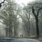 Gezin wandelend in bos van Gaasterland - FrieslandStock
