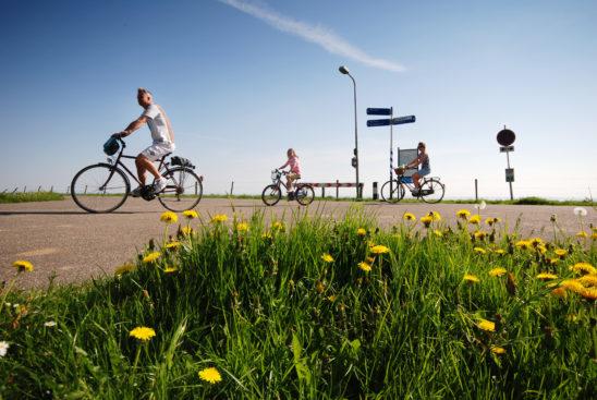 Fietsers bij Laaksum - FrieslandStock