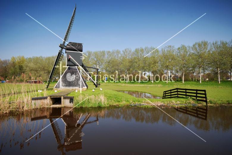 Molentje Sneek - FrieslandStock