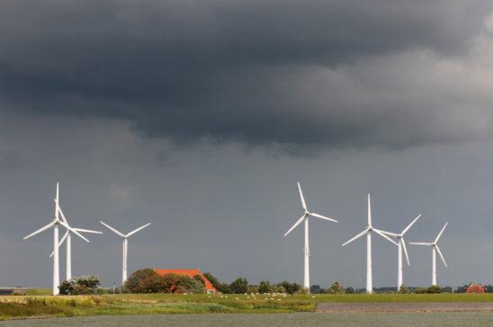 Zeedijk bij Cornwerd - FrieslandStock