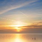 Zwanen vliegend over IJsselmeer - FrieslandStock