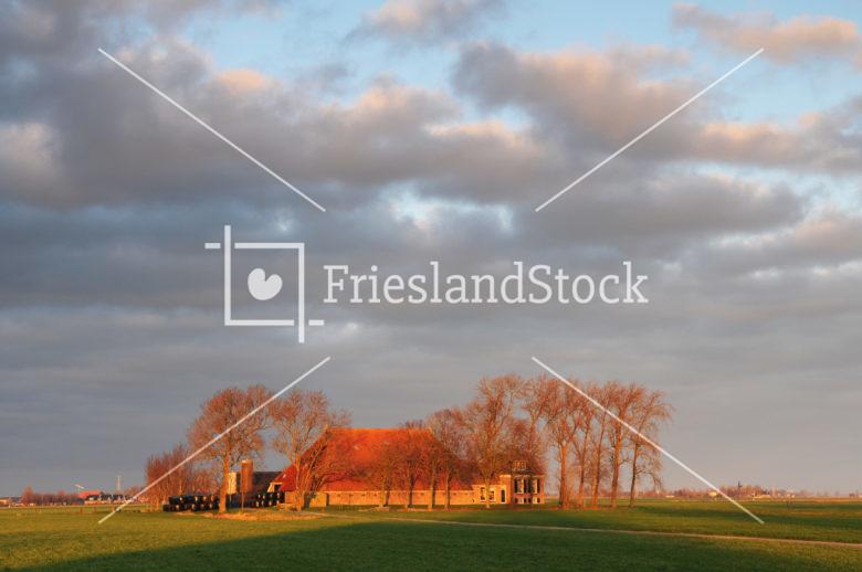Boerderij in landschap - FrieslandStock