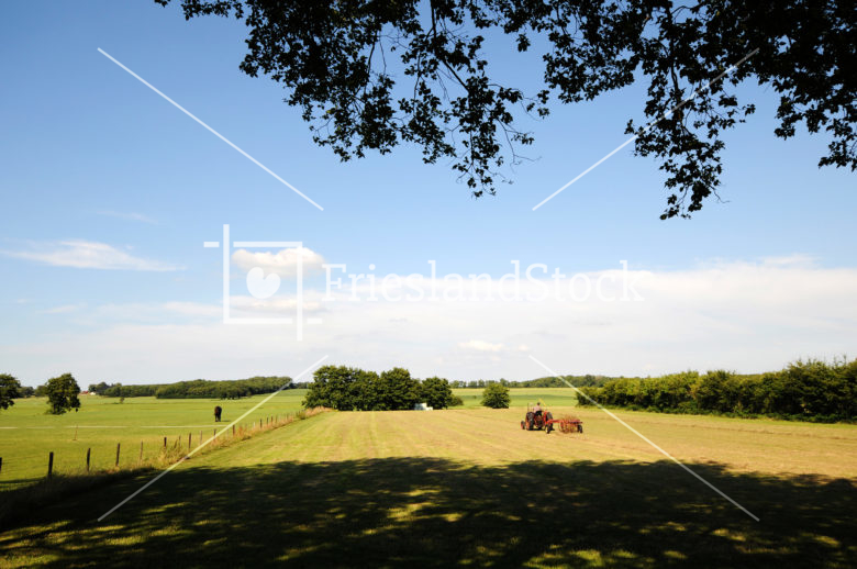 Boer in weiland bij Mirns - FrieslandStock