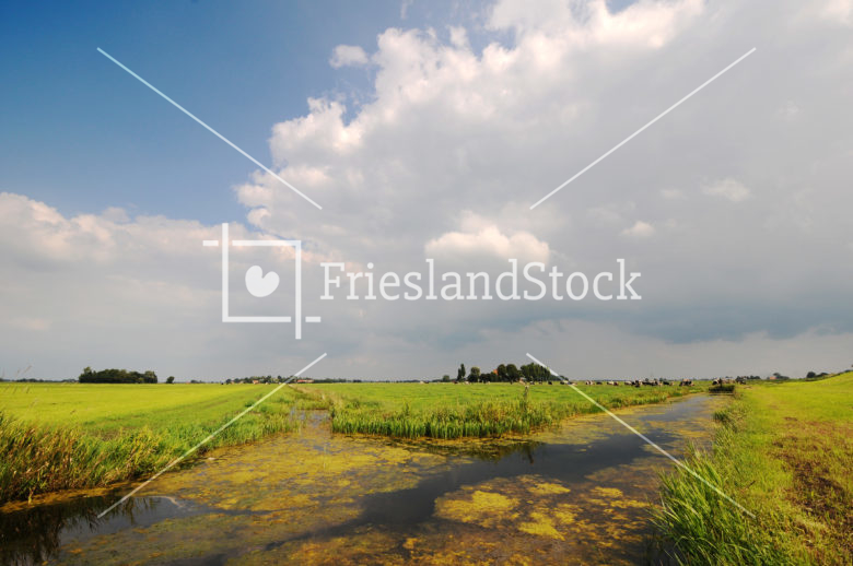 Landschap bij Schoterzijl - FrieslandStock