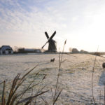 Molen Workum - FrieslandStock