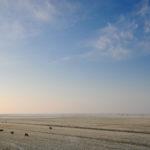 Winters landschap bij Gaast - FrieslandStock