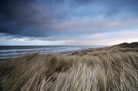 Strand Vlieland - FrieslandStock